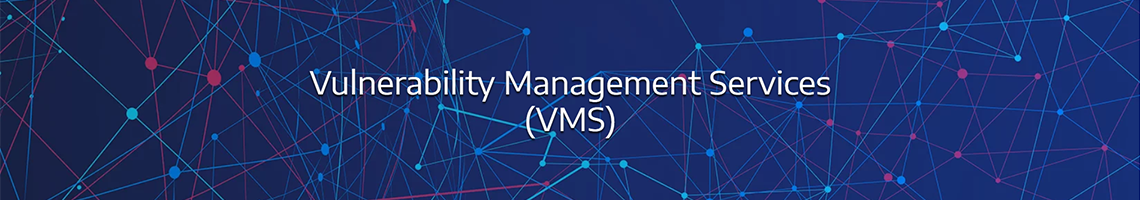Vulnerability Management Services (VMS)